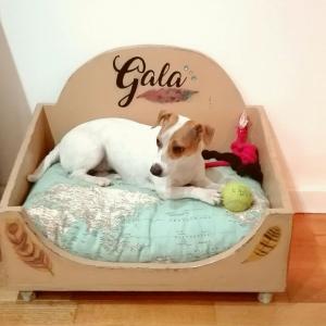 cama señorial perro clásico