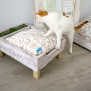 enriquecimiento ambiental cama gato