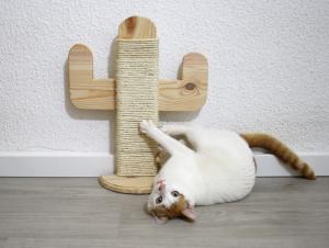 rascador gatos bonito