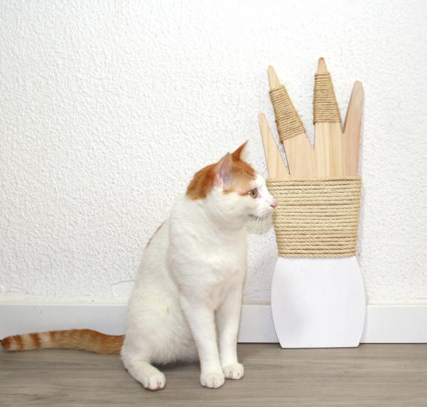 jardín rascado para gato
