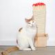 rascador felinos jardín gato
